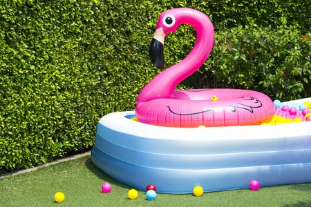 piscina hinchable con el globo del flamenco en el jardín Foto de archivo