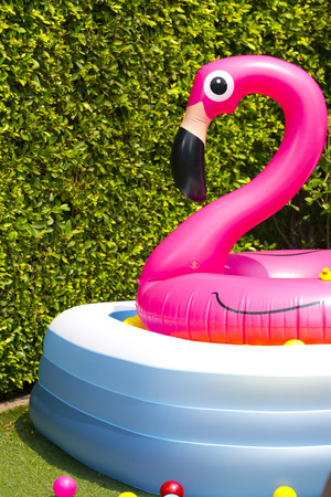 inflatable: inflatable pool with flamingo balloon in garden