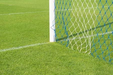 groen gras in het stadion