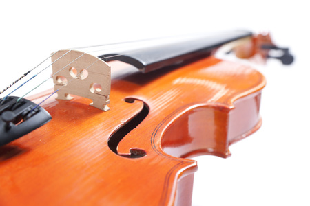Violin on a white background.