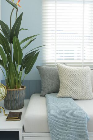 Beautiful green plant beside white couch with pale blue wall and window.