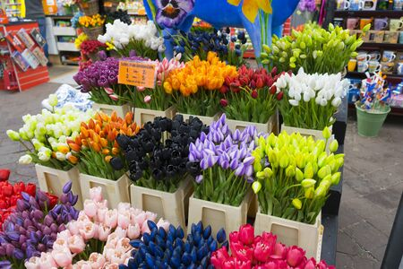 A lot of different color tulips in the shop at Amsterdam flower market (Bloemenmarkt), Netherlands.