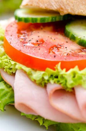 Closeup of opened sandwich with slices of tomatoes, lettuce and cucumber  Stock Photo - 17056306