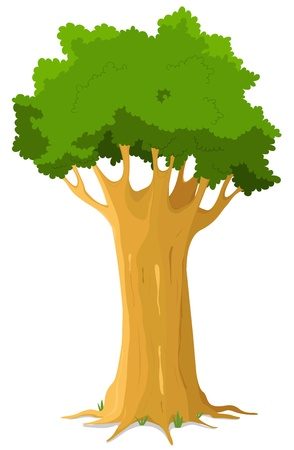 Illustration of a majestic cartoon big oak tree on white background Vector