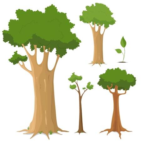 tronco: Ilustración de un conjunto de gran variedad de árboles, jóvenes y viejos