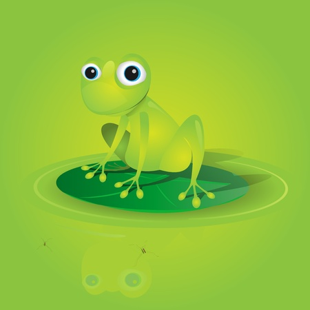 tiny frog: Illustration of a lovely green frog standing on a waterlily vector without transparency  Illustration
