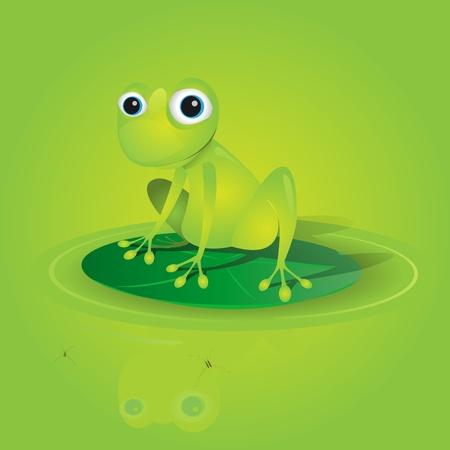 tree frogs: Ilustraci�n de una rana verde hermosa de pie en un vector de nen�far sin transparencia