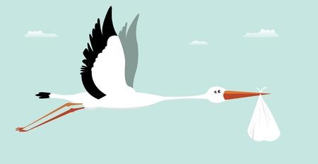 cicogna: Illustrazione di una borsa cicogna consegna per la nascita boy