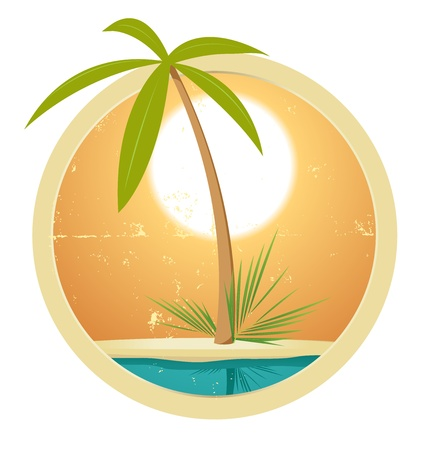 on palm tree: Illustration of a summer banner, with palm tree and grunge texture