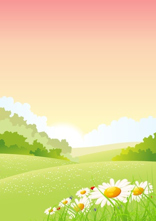 Illustration of a summer or spring seasonal morning landscape poster  background, with flowers at the foreground Vector