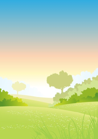 hedges: Illustration of a beautiful summer or spring seasonal morning landscape poster background Illustration