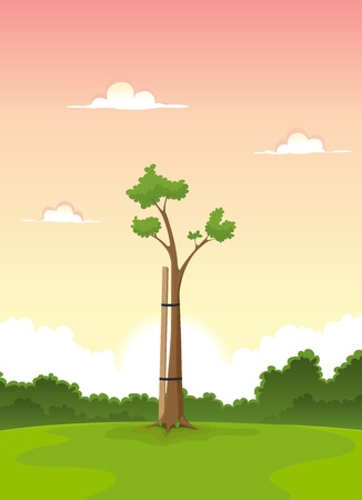 Illustration of a cartoon young tree in a garden with pink sunrise sky behind symbolizing morning of life and spring season Vector