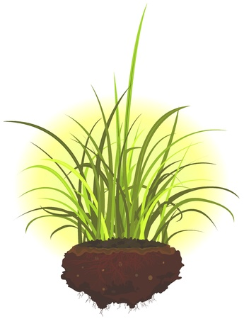 grass blades: Illustration of a cartoon heap of ground with grass leaves and roots