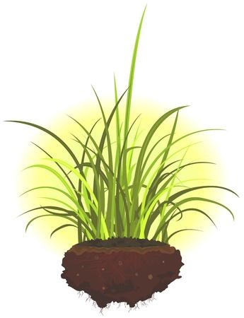 soils: Illustrazione di un cartone animato mucchio di terra con foglie di erba e radici Vettoriali