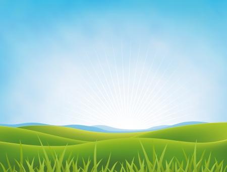 Ilustración de un paisaje de primavera o de verano en un cielo nublado brillante, con verdes campos y los prados y pastos en el primer plano