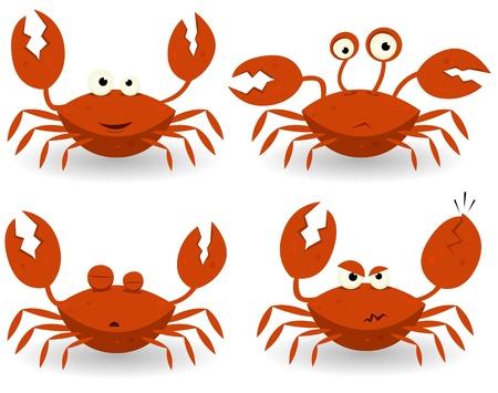 cangrejo caricatura: Ilustración de un conjunto de personajes de dibujos animados de playa cangrejo rojo con diversas expresiones y emociones