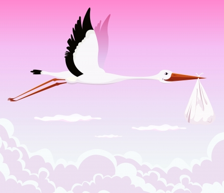 baby delivery: Illustration of a stork delivering baby girl in a bag for birth announcement, newborn holidays celebration and anniversaries Illustration