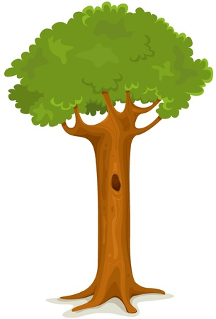 Illustration of a cartoon single spring or summer season tree with trunk hollow, on white background