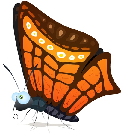 little insect: Illustration of a funny cartoon butterfly insect character with beautiful wings and striped ornament patterns