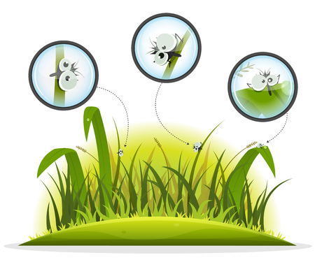 summer nature: Illustration of funny cartoon little flies insects inside spring or summer nature landscape, looked with zoom from a magnifying glass, with grass and lawn landscape