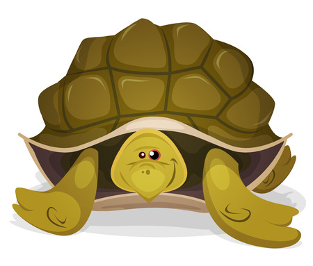 vertebrate: Illustration of a funny happy and cute cartoon green tortoise character Illustration