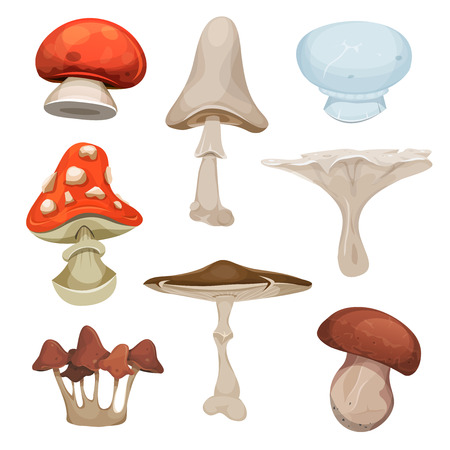 boletus: Illustration of a cartoon set of various species of mushrooms, with ceps, boletus and amanita