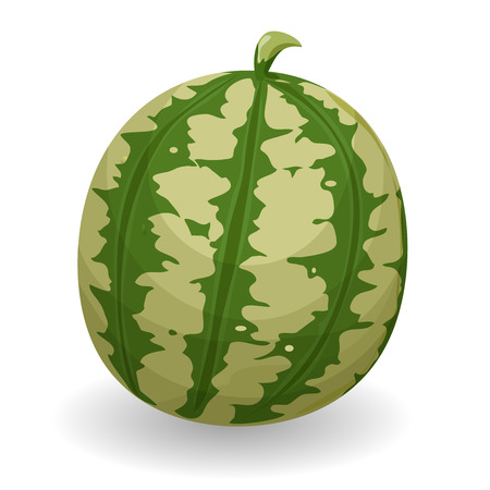 Illustration of an appetizing summer watermelon