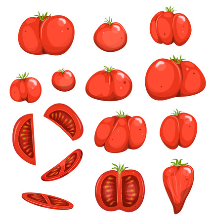 Illustration of a set of cartoon appetizing red tomatoes.