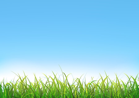 Illustration of a blue sky landscape with green grass leaves and lawn Illustration