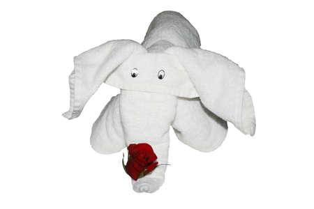 Towel elephant 版權商用圖片