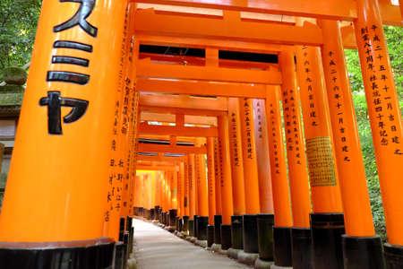 Thousands of torii at Inari