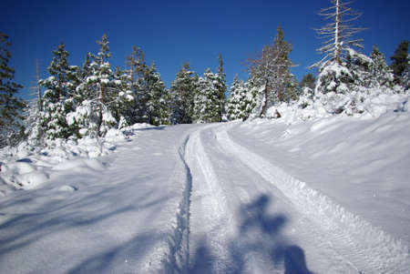 hiway: Tire tracks in fresh snow