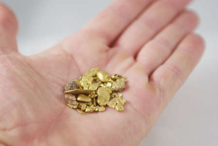 placer: Many gold nuggets held in the palm of a hand.