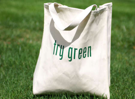replaces: Shopping bag made out of recycled materials, replaces plasic shopping bags Stock Photo