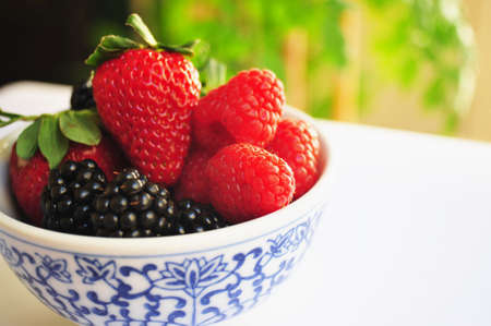 Blackberry, Raspberry and Strawberries in a small white and blue bowl. Reklamní fotografie
