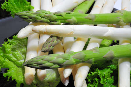 asparagus bed: Green and white asparagus on a bed of lettuce
