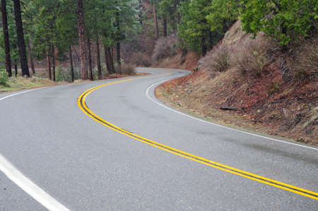 Sierra mountain road and yellow dividing line with trees and lite snow photo