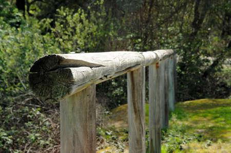 Old wooden horse hitching post along an equestrian trail