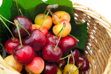 Bing and Rainier cherries in a small wicker basket ready to eat.