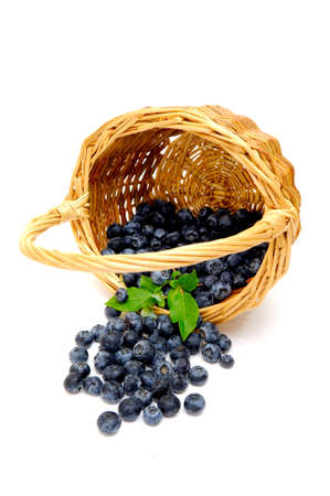 A wicker basket on its side with freshly picked berries spilling out on to a light colored background