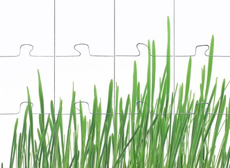 photomontage assembled puzzle grass on white background photo