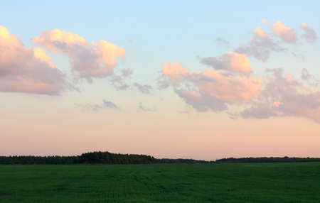background of sky with clouds and grass Stock Photo - 8411063