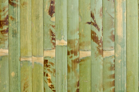 homogeneous: Sample of homogeneous texture of green wood bamboo  wallpaper