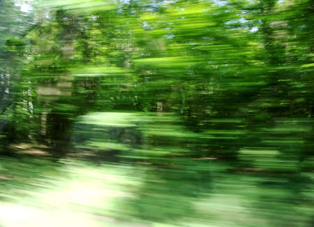 greenwood: Abstract greenwood