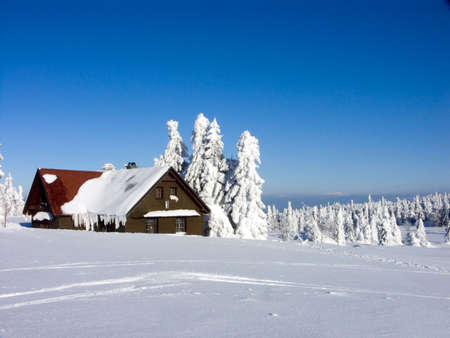 Orlicke mountains, Czech Republic, a perfect place to have a White Christmas or to celebrate the New Year ! photo