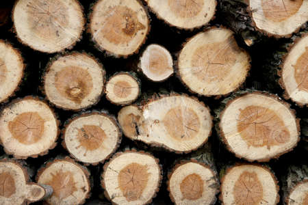 A background of wood stock photo