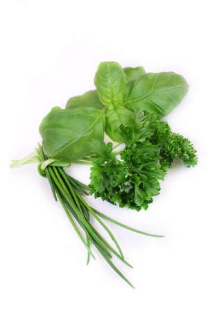 basilico: hierbas verdes sobre fondo blanco