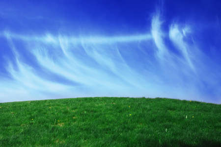 Green grass landscape blue sky for Backgrounds and design Stock Photo - 10358564