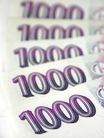 mucho dinero: Checa dinero sobre fondo blanco Foto de archivo