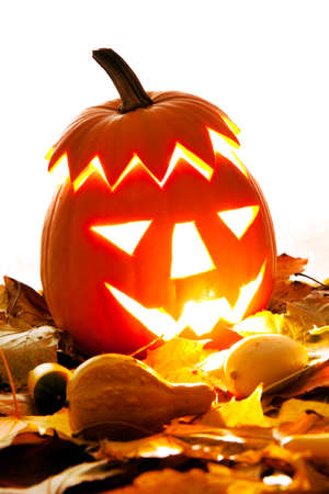 lighting background: Lighting Halloween Pumpkin with autumn leaves with white background